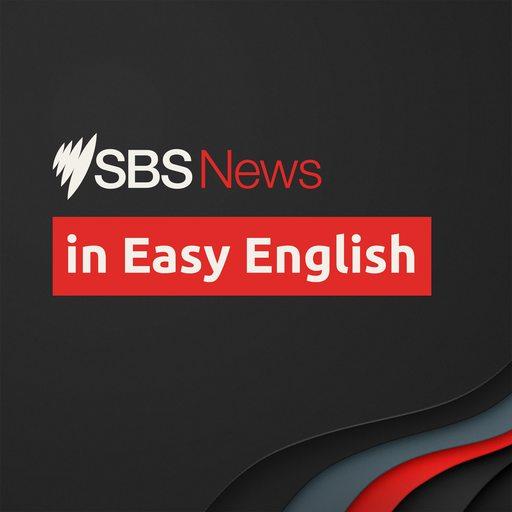 SBS News - Watch: NSW COVID-19 update   Facebook